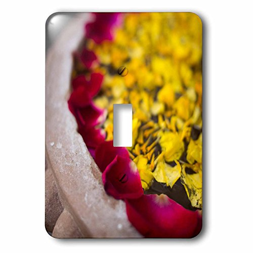 3dRose lsp_187789_1 Flower Petals Floating On Water for sale  Delivered anywhere in USA
