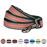 Blueberry Pet 8 Colors 3M Reflective Multi-colored Stripe Dog Leash with Soft & Comfortable Handle, 5 ft x 3/4'', Dark Green & Pink, Medium, Leashes for Dogs