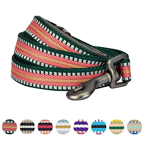 Blueberry Pet 8 Colors 3M Reflective Multi-colored Stripe Dog Leash with Soft & Comfortable Handle, 5 ft x 3/4'', Dark Green & Pink, Medium, Leashes for Dogs by Blueberry Pet