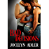 Bad Decisions (Smart Sexy Nerds Book 2)