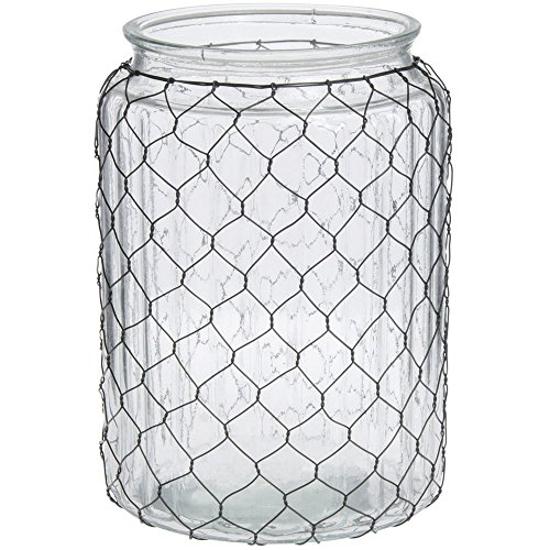 Glass Chicken Wire Vase Wide-Mouth - 7 1/2 Dia x 10 1/2 (Vases Collection Vase)