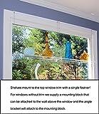 Beautiful Views Hanging Window Plant Shelves