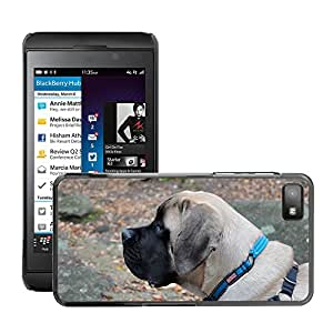 GoGoMobile Slim Protector Hard Shell Cover Case // M00119009 English Mastiff Mastiff Dog // BlackBerry Z10