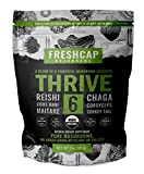 THRIVE 6 Powerful Mushroom Extract Powder - USDA Organic - Lions Mane, Reishi, Cordyceps, Chaga, Turkey Tail, Maitake -60g- Supplement - Add to Coffee/Tea/Smoothies– Real Fruiting Body–No Fillers