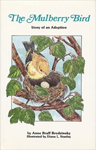 Image result for The Mulberry Bird: An Adoption Story