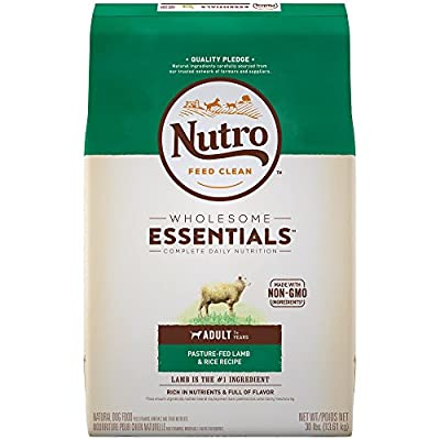 Nutro Wholesome Essentials Adult Dry Dog Food - Lamb & Rice by Nutro Core Dry Dog