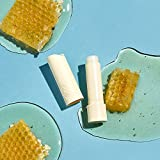 eos Natural & Organic Stick Lip Balm - Variety Pack | Strawberry Sorbet, Sweet Mint, Vanilla Bean, and Pomegranate Raspberry | 100% Natural Shea Lip Balm | 0.14 oz. | 4-Pack