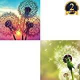 2 Pack 5D DIY Dandelion Diamond Painting Set Full Drill Diamond Painting Kits By Numbers DIY Tools,Dandelion(30x30CM/12''x12'')