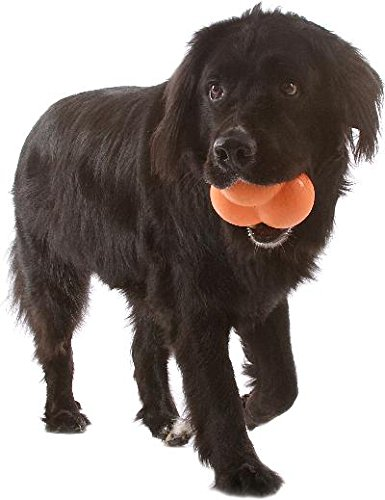 - Our Pets 2550013004 Atomic Treat Ball