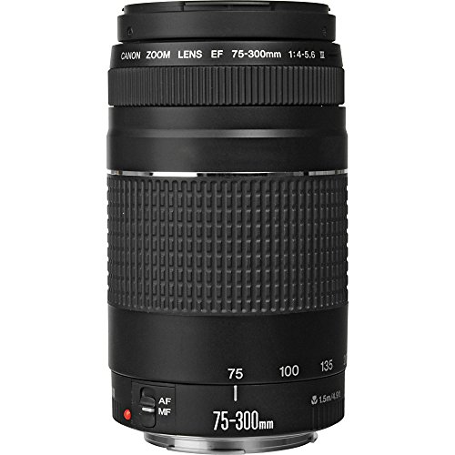 51ONqsl4ZPL - Canon EF 75-300mm f/4-5.6 III Telephoto Zoom Lens for Canon SLR Cameras (Certified Refurbished)