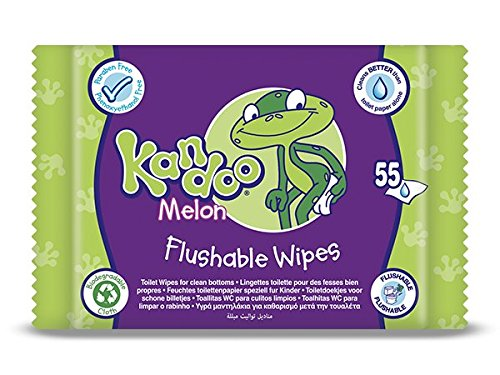 Kandoo Melon Flushable Toilet Wipes - Pack of 12, Total 660 wipes CODI 325-2897