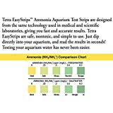 Tetra EasyStrips 100 Count, Ammonia Test Strips For aquariums, Water Testing