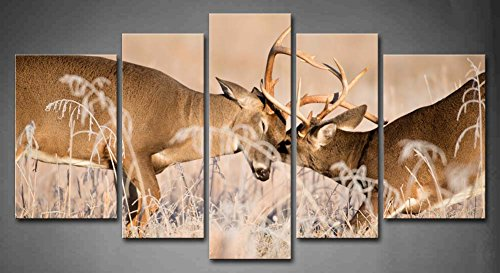 5 Panel Wall Art White Tailed Deer Bucks Sparring Painting Pictures Print On Canvas Animal The Picture For Home Modern Decoration piece (Stretched By Wooden Frame,Ready To Hang)