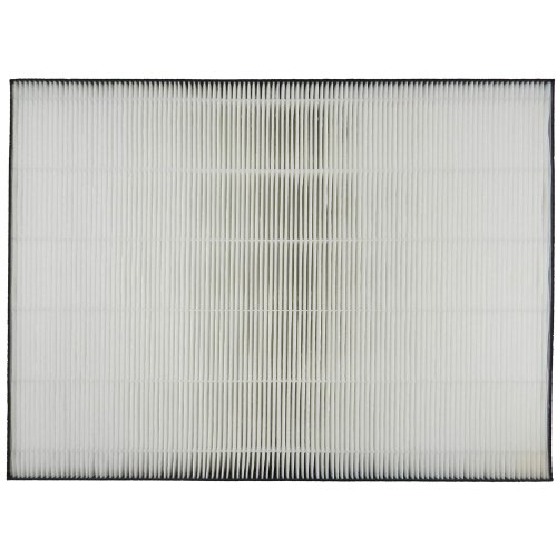 Sharp True Replacement Filter FP A80UW product image