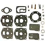 ZaZaTool CARBURETOR OVERHAUL KIT FOR BRIGGS AND STRATTON 394502 491539 694056 400400 422700 42D700
