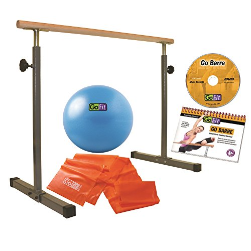 GoFit Portable, Adjustable, Ballet Bar Set GoBarre Set Includes Resistance Bands and Core Ab Ball