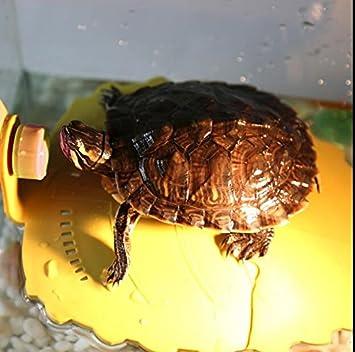 Plateforme se dorante, décoration flottante L de réservoir de terrasse de pilier de reptile d'aquarium de petits de tortue de grenouille de Newt poissons amphibies (de crabe) SoFou