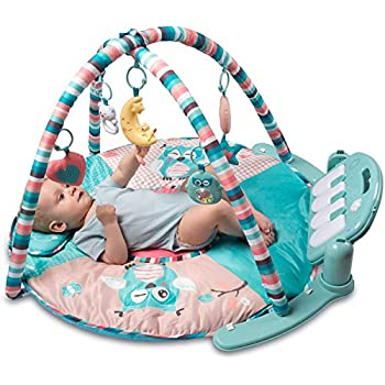 Amazon Com Skip Hop Baby Treetop Friends Activity Gym