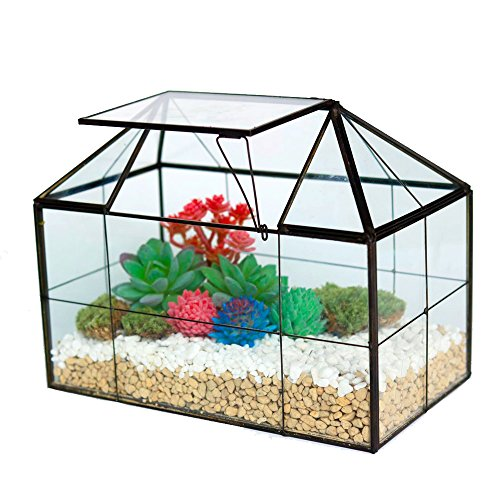 Purzest Glass Terrarium,House Shape Close Glass Geometric Terrarium Tabletop Succulent Plant Box Planter For Sale