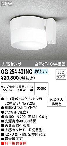オーデリック エクステリアライト ポーチライト 【OG 254 401NC】OG254401NC B01AHQF8GM 10311