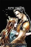 New Moon: The Graphic Novel, Vol. 1 (Twilight Saga)