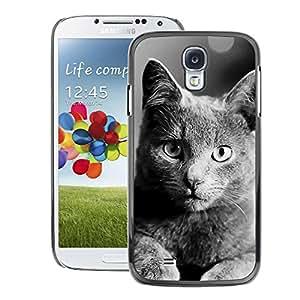 Snap-on Series Teléfono Carcasa Funda Case Caso para Samsung Galaxy S4 , ( British Shorthair )