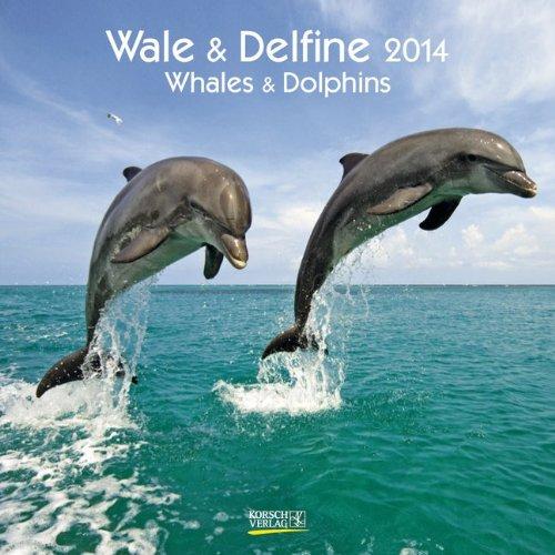 Wale & Delfine 2014 Whales & Dolphins Broschürenkalender