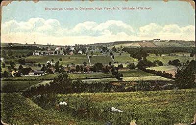 Sha-Wan-Ga Lodge In Distance High View, New York Original Vintage Postcard