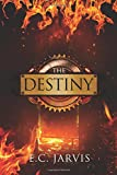 The Desinty (Blood and Destiny) (Volume 4)