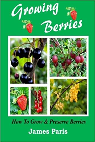Buy Strawberries, Raspberries, Blackberries, Blueberries