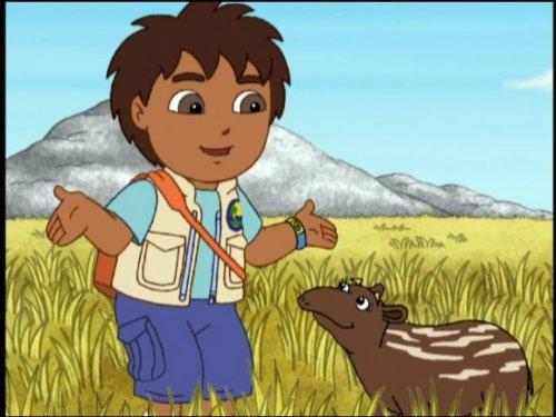 The Tapir's Trip Home