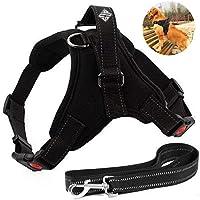Arnes para perro marca ACS, pechera comoda y ergonomica color negra talla grande, mediana, y chica; con bono de correa de 1.2 metros