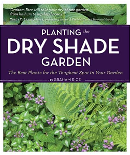 Planting the Dry Shade Garden: The Best Plants for the Toughest Spot on shade plants perennials, shade garden design plans, shade garden catalog, shade garden around house designs, shade garden zone 7 design, flower garden ideas zone 4, shade garden landscape design, shade garden with water feature, rain garden plants zone 4, rock garden plants zone 4,