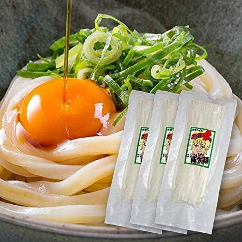 讃岐 熟成 半生 完熟 極太麺 便利な個包装 250g×3袋 750g