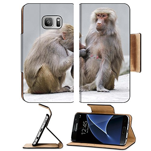 msd-premium-samsung-galaxy-s7-flip-pu-leather-wallet-case-image-id-14744895-two-baboons-engaged-in-m