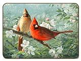 Jason Garden Birds Placemats - Set of 4 (Large)