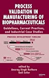 Process Validation in Manufacturing of Biopharmaceuticals: Guidelines, Current Practices, and Industrial Case Studies (Biotechnology and Bioprocessing)