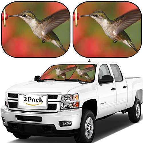 (MSD Car Windshield Sun Shade, Universal Fit, 2-Piece for Car Window SunShades, Automotive Foldable Protector Cover, ID: 41925923 Female Ruby Throated Hummingbird archilochus colubris in Flight at a f)