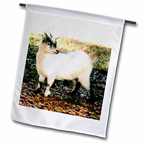 Farm Animals - Pygmy Goat - 18 x 27 inch Garden Flag (fl_...
