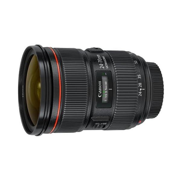 RetinaPix Canon EF 24-70mm F/2.8L II USM Standard Zoom Lens for Canon DSLR Camera