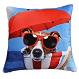 Soft Dog Bed - nioBomo Square Cushion Cover Throw Pillow Sham Pillow Case Home Decoration Suitable for Sofa Car Bed Office Super Soft 18