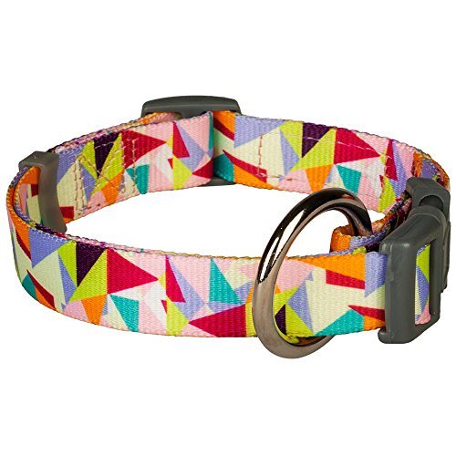 Blueberry Pet 3/4-Inch Adorable Triangles in Colorful Spring Pastels Designer Dog Collar, Medium