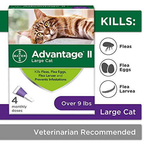 Flea Prevention Cats, over 9 lbs, 4 doses, Advantage II