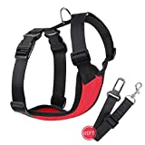 Lovely Baby Front Range No-pull Dog Harnesses - Best Reviews Guide