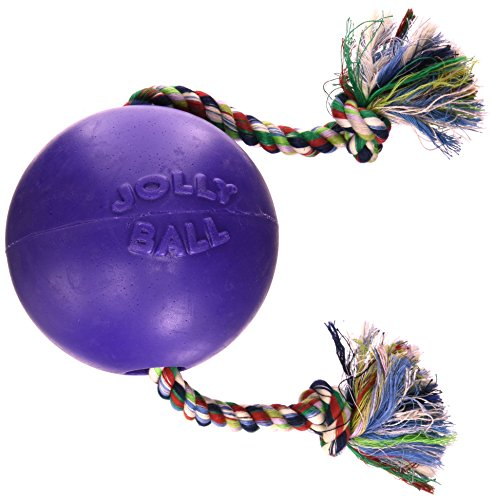 Jolly Pets Romp and Roll Ball, Purple (6 in.)