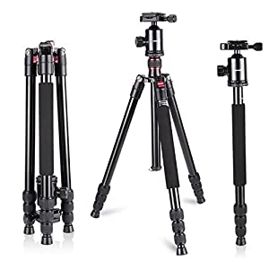 Neewer Aluminum Alloy 64 inches/162 centimeters Camera Travel Tripod Monopod with Degree Ball Head,1/4 inch Quick Shoe Plate and Bag for DSLR Camera Video Camcorder up to pounds/12 kilograms 360 26.5