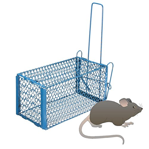 rat-cage-rodent-animal-mouse-hamster-cage-mice-rat-control-catch-bait-size-s