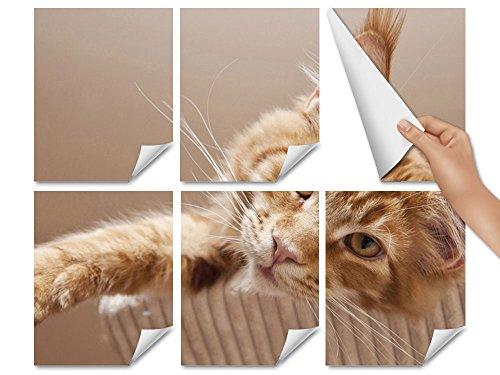 Adesivo per piastrelle adesivi animali gatto con gatto bagno