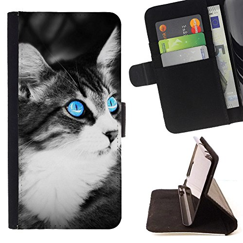 God Garden - FOR Apple Iphone 5C - Black And White Cat - Glitter Teal Purple Sparkling Watercolor Personalized Design Custom Style PU Leather Case Wallet Fli