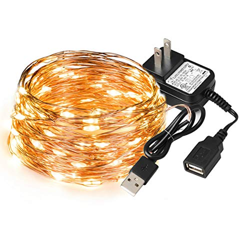 SEALIGHT LED String Lights Fairy Lights, Copper Wire Lights 33ft with 100 LEDs, Starry Lights, USB Powered, Indoor Decorative String Lights for Holidays, Wedding, Parties, Bedroom, 2700K Warm White